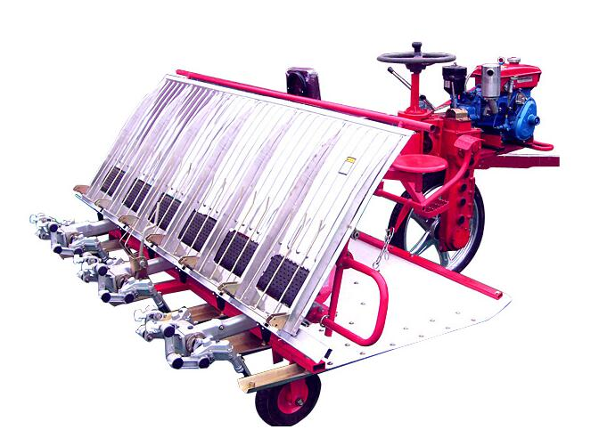 The rice transplanter was used to straighten the waist of the rice field