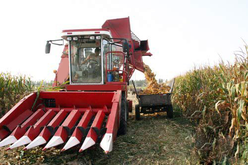 Corn harvester leads the autumn harvest into a clean and efficient new era